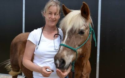 Tierhomöopathie-Ausbildung erfolgreich absolviert